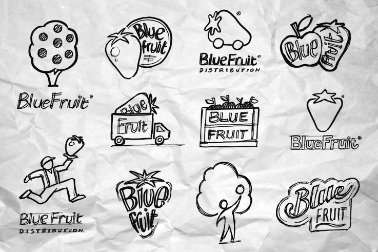 Blue Fruit logo concepts2